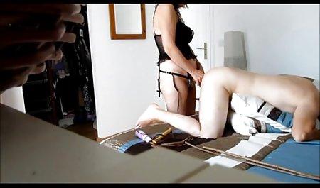 컬렉션의 캔디 Evans Czech pornoholio